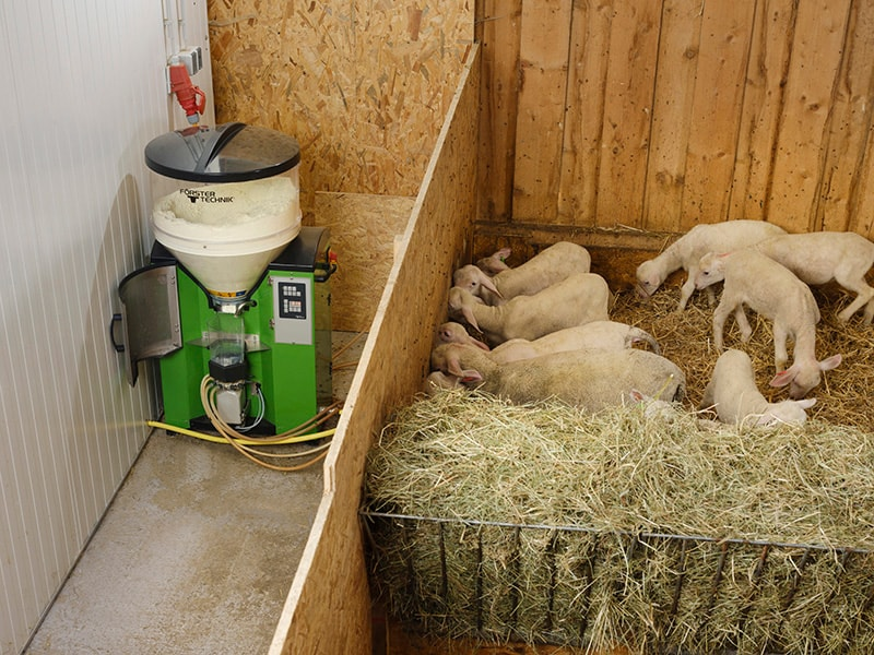 l'étable des agneaux - distributeur automatique
