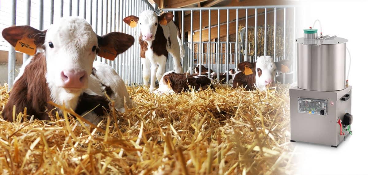 Le MilkCollector collecte et transport du lait pour l'alimentation des veaux